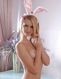 Dear bunny cooky
